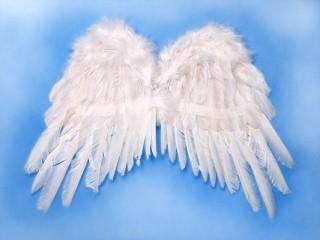 Andělská křídla 50x35 cm