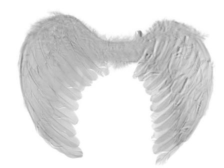 Andělská křídla 50x38cm